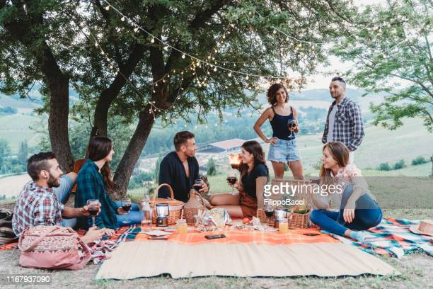 friends doing a picnic together at sunset in the countryside - picnic foto e immagini stock