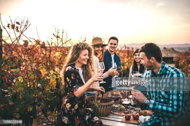 friends doing a wine tasting - tourism stock pictures, royalty-free photos & images