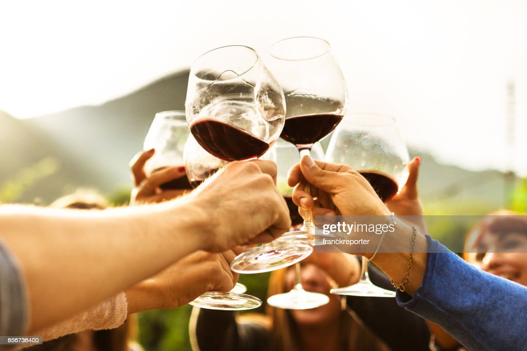 friends doing a wine tasting : Stock Photo