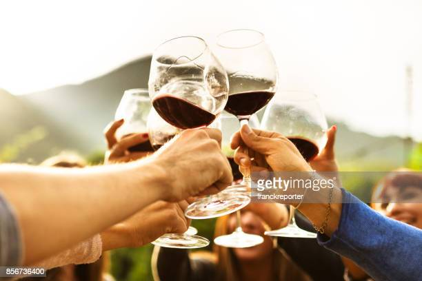 friends doing a wine tasting - wine glass stock pictures, royalty-free photos & images