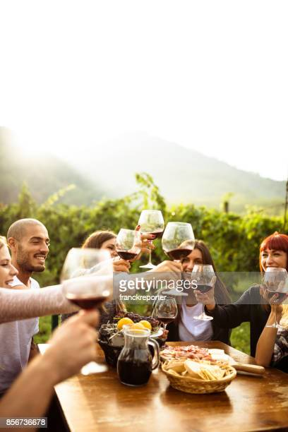 friends doing a wine tasting - wine vineyard stock photos and pictures