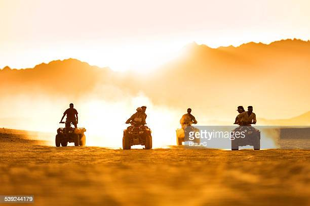 Friends driving quad bikes at sunset.