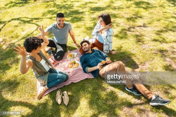 草の上でピクニックを楽しむ友人 - リオグランデドスル州 ストックフォトと画像