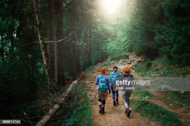 vänner att utforska naturen - rumänien bildbanksfoton och bilder