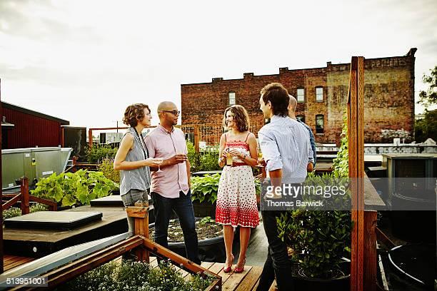 Friends having drinks in rooftop garden