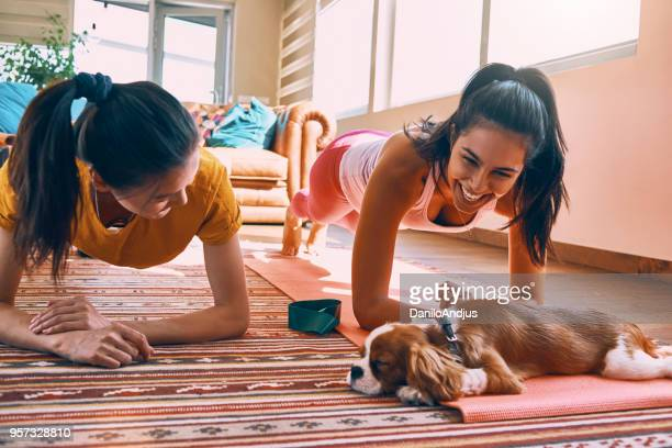 friends having fun doing home workout - plank exercise stock pictures, royalty-free photos & images