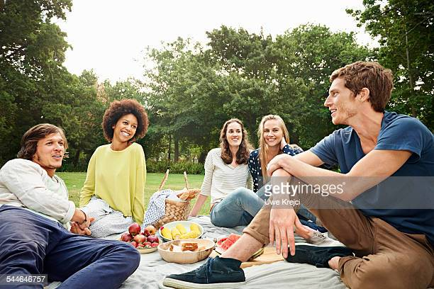 friends having picnic - picnic stock pictures, royalty-free photos & images