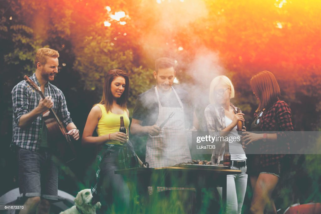 Friends having picnic : Stock Photo