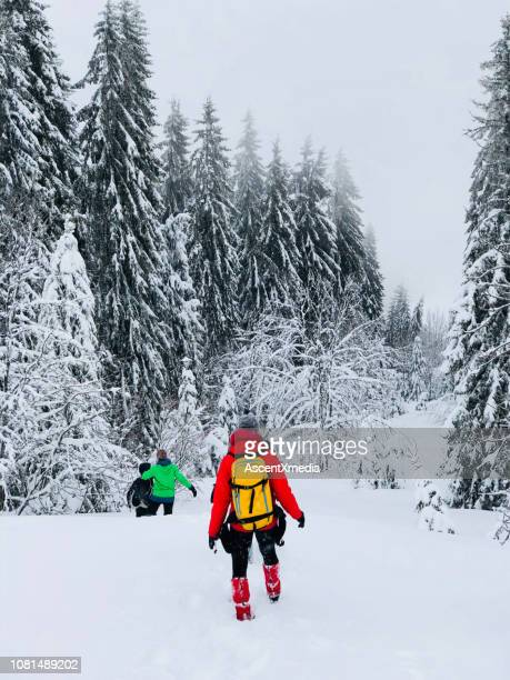 friends hike through snow - green coat stock pictures, royalty-free photos & images