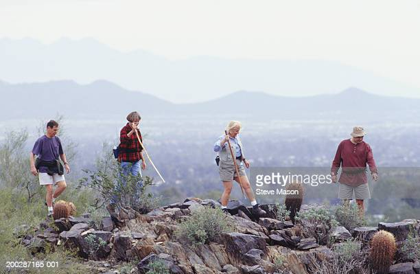 Friends hiking in mountains, elevated view