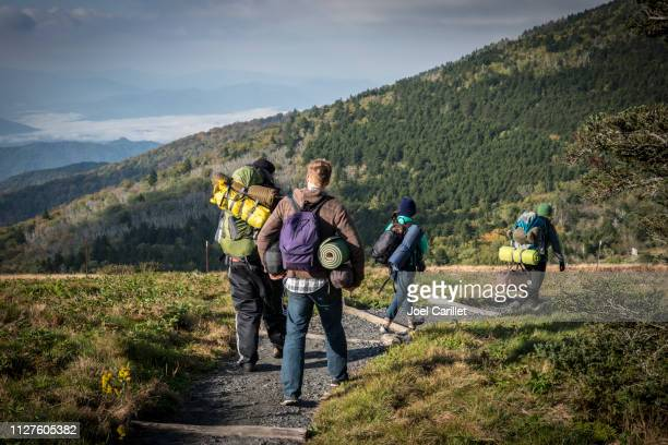 friends hiking with camping gear on roan mountain, appalachian trail - appalachian trail stock pictures, royalty-free photos & images