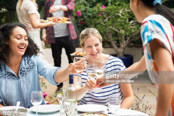 Friends making a toast at barbecue party.