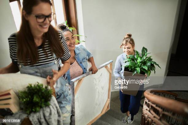 friends moving - roommate stock pictures, royalty-free photos & images