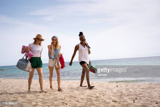 friends on summer vacation - wide shot stock pictures, royalty-free photos & images