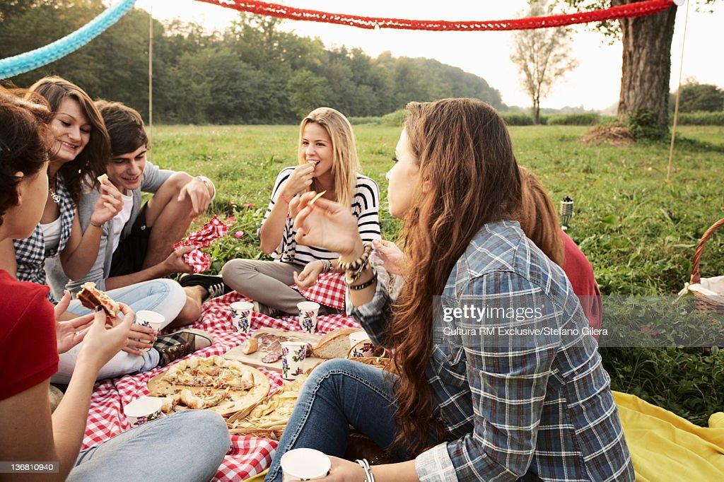 Friends picnicking in field : Foto de stock