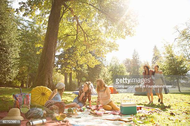 friends picnicking together in park - park stock-fotos und bilder