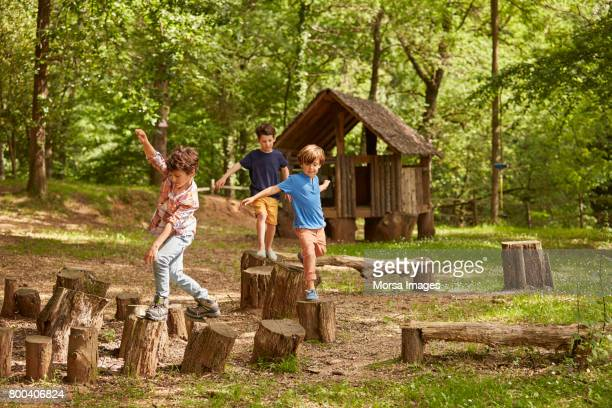 Friends playing on tree stumps in forest