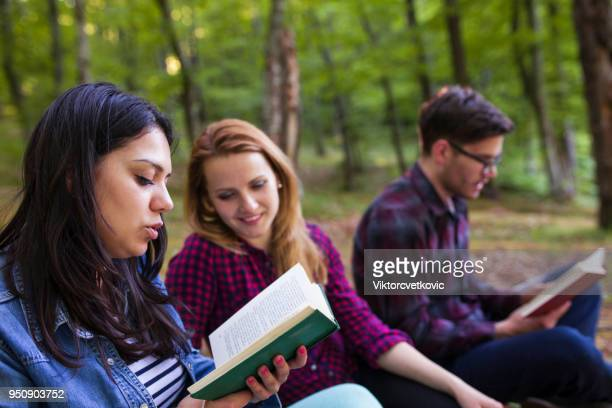 friends reading a book on a picnic - free bible image stock pictures, royalty-free photos & images