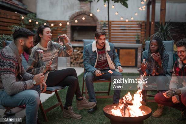 Friends roasting marshmallows on fire pit