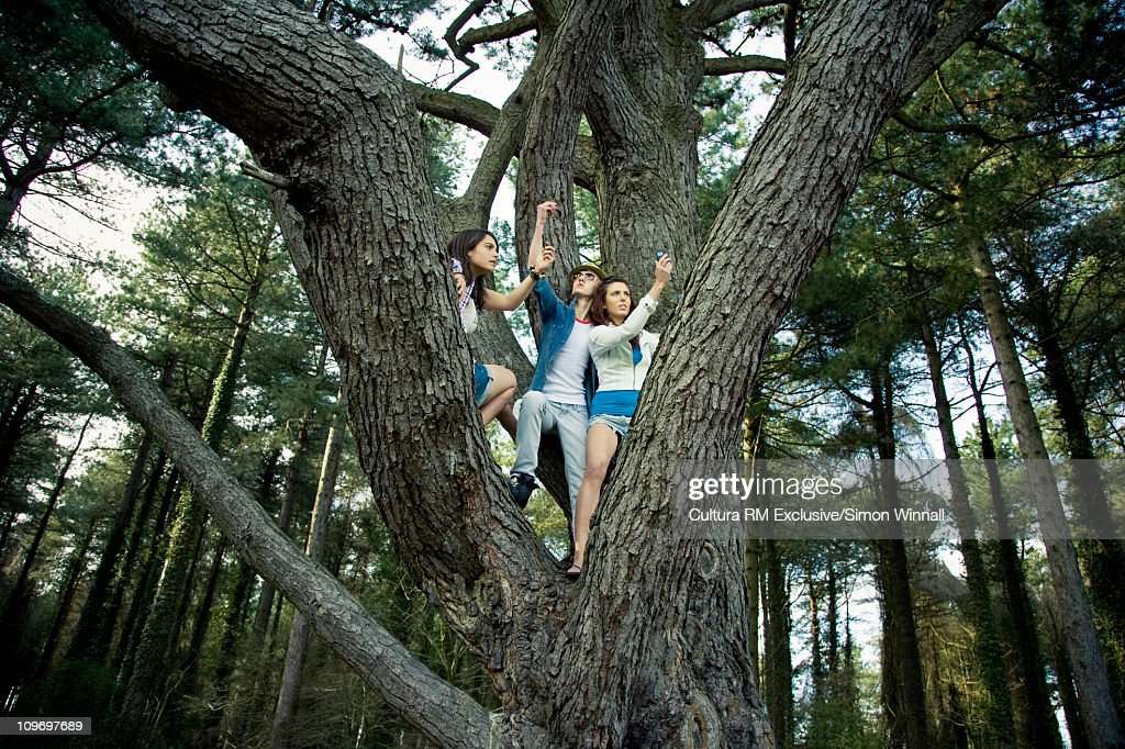 Friends searching for phone signal : Stock Photo