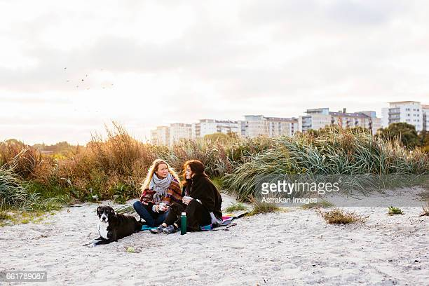 Friends sitting with dogs on beach against sky