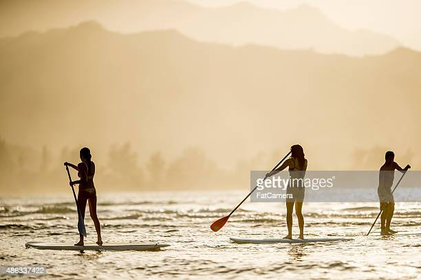 friends stand up paddle boarding at dusk - north shore stock photos and pictures
