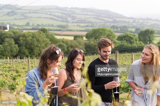 Friends strolling through a vineyard