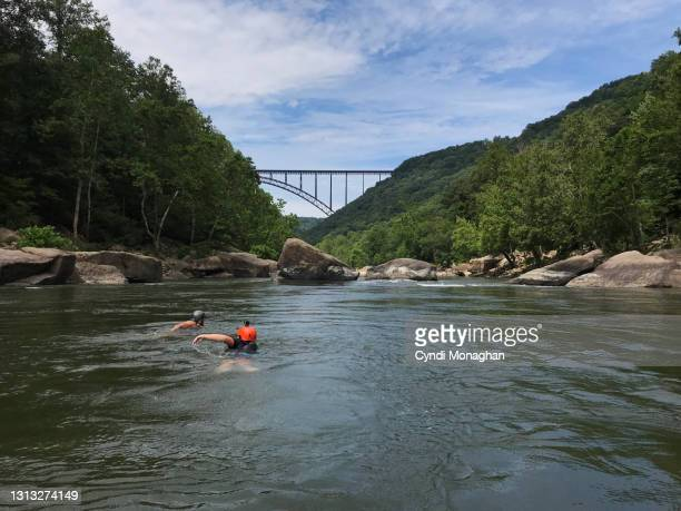 friends swimming in the new river gorge on a white water rafting trip - fayetteville stock pictures, royalty-free photos & images
