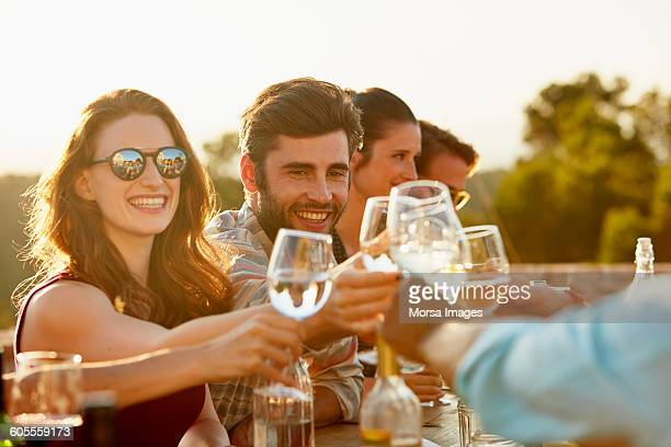 friends toasting at dinner party - white wine stock pictures, royalty-free photos & images