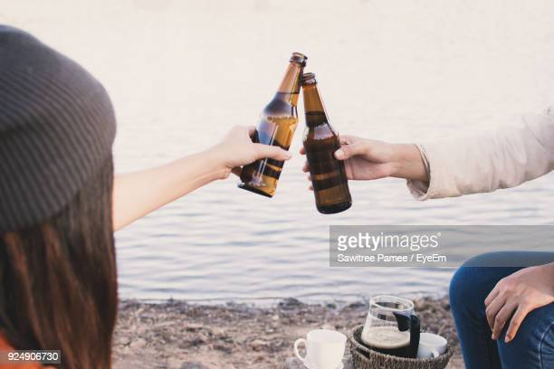 friends toasting beer bottles at lakeshore - beer bottle stock pictures, royalty-free photos & images