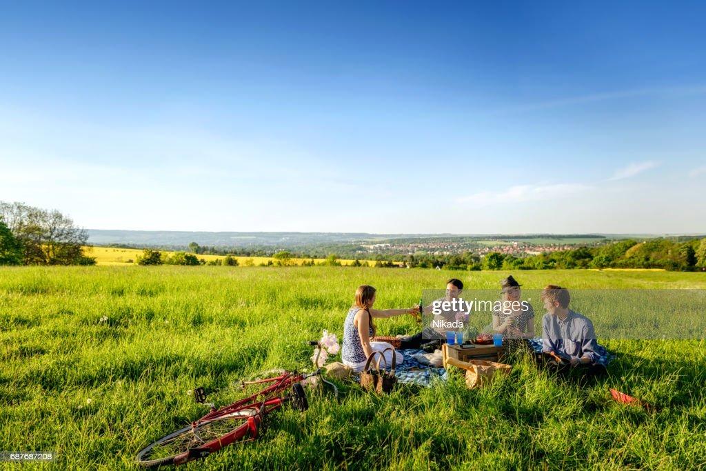 Freunde, toasten Flaschen und ein Picknick auf Feld : Stock-Foto