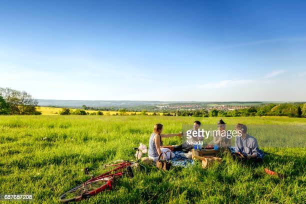 Friends toasting bottles and having a picnic on field