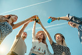 friends toasting bottles having picnic field