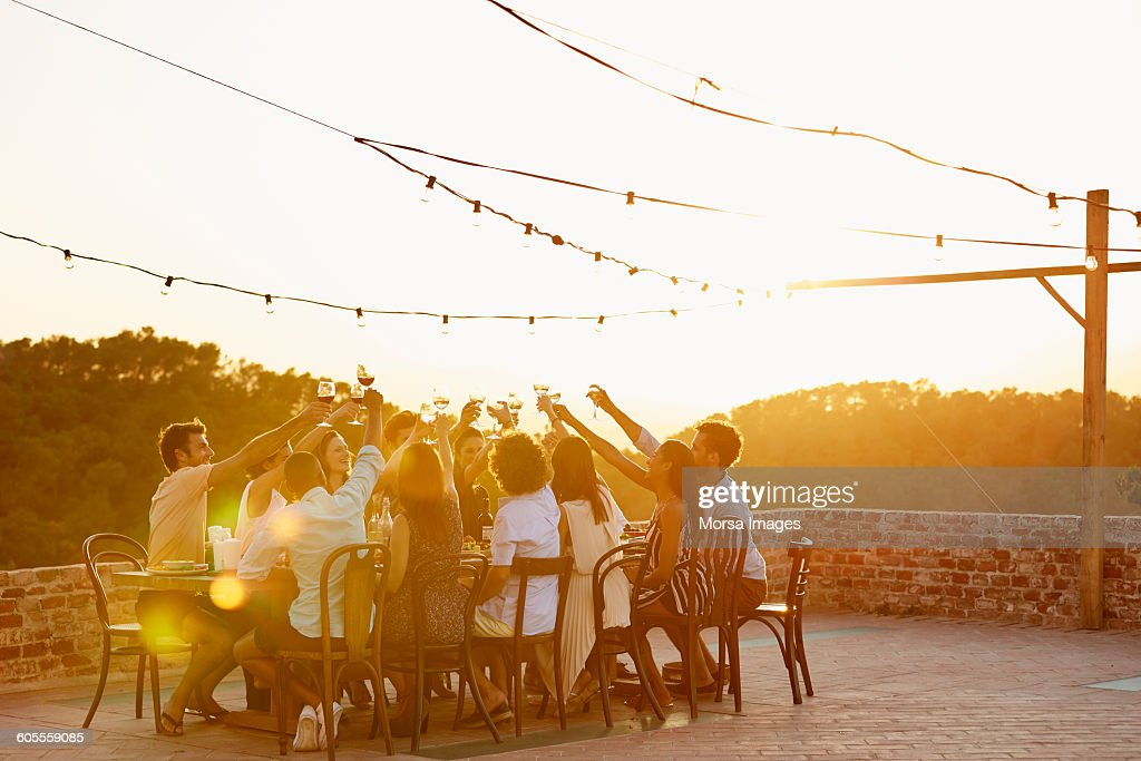 Friends toasting drinks during social gathering : Stock Photo