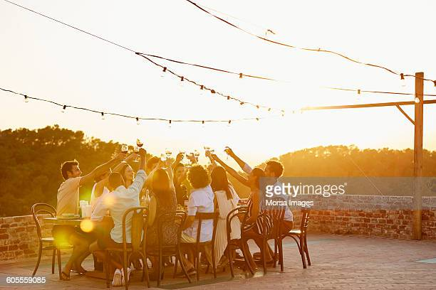 Friends toasting drinks during social gathering