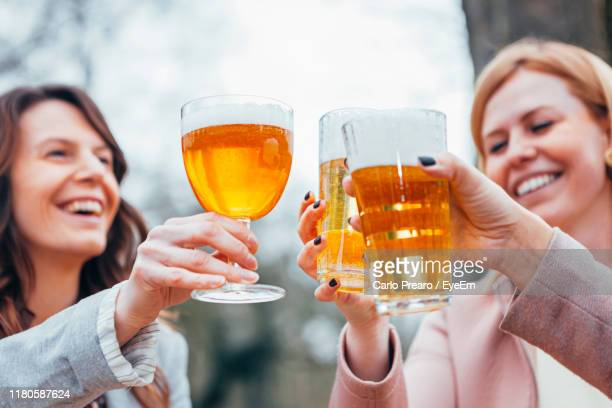 friends toasting glasses on table against trees - belgium stock pictures, royalty-free photos & images