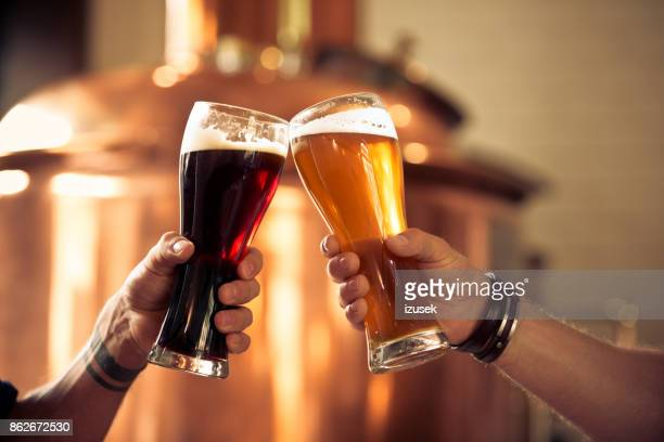 friends toasting with beer glasses in the microbrewery - ale stock pictures, royalty-free photos & images