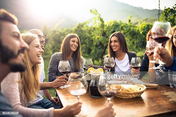 friends toasting with red wine after the harvesting - food and drink stockfoto's en -beelden