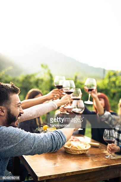 friends toasting with red wine after the harvesting - vertical stock pictures, royalty-free photos & images
