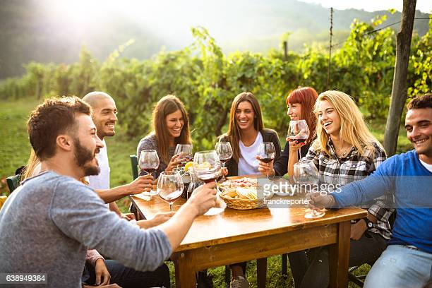 friends toasting with red wine after the harvesting