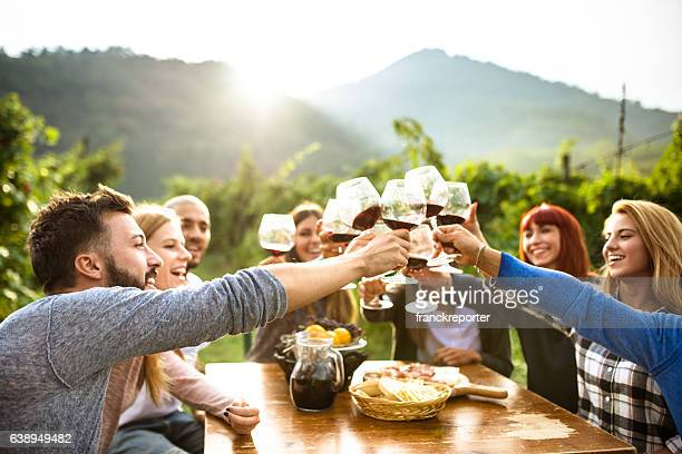 friends toasting with red wine after the harvesting - aperitif stock photos and pictures