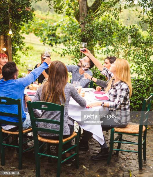 friends toasting with red wine on the lunch