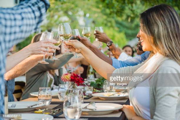 friends toasting with wine at party outdoors - grupo mediano de animales - fotografias e filmes do acervo