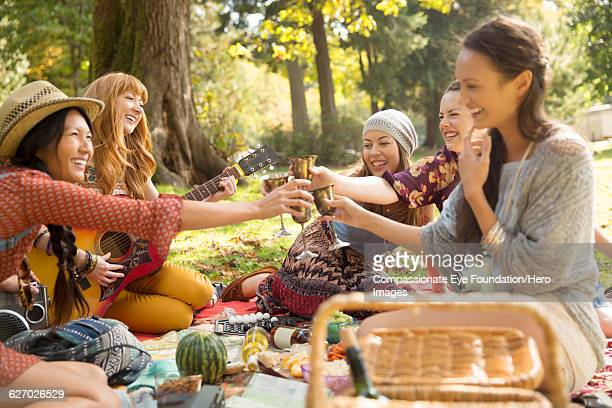 Friends toasting with wine glasses at picnic