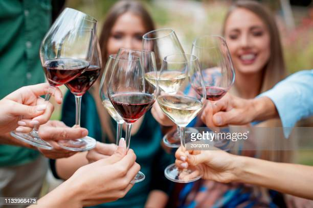 friends toasting with wine - winery stock pictures, royalty-free photos & images