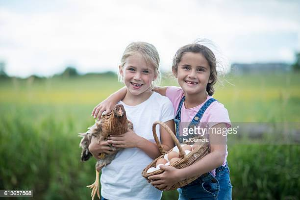 Friends Together on the Farm