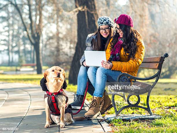 Friends using netbook