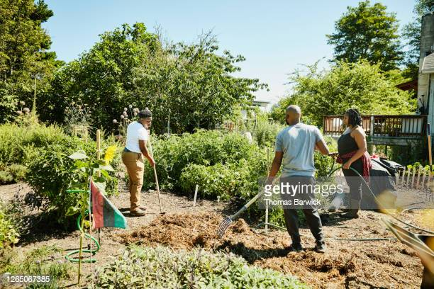 friends volunteering together on urban farm - self sufficiency stock pictures, royalty-free photos & images
