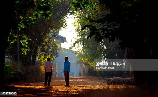Friends walk and chat in morning sun light in Tadoba forest. The Tadoba National Park, Maharashtra is a famous destination to spot tigers. It is a...