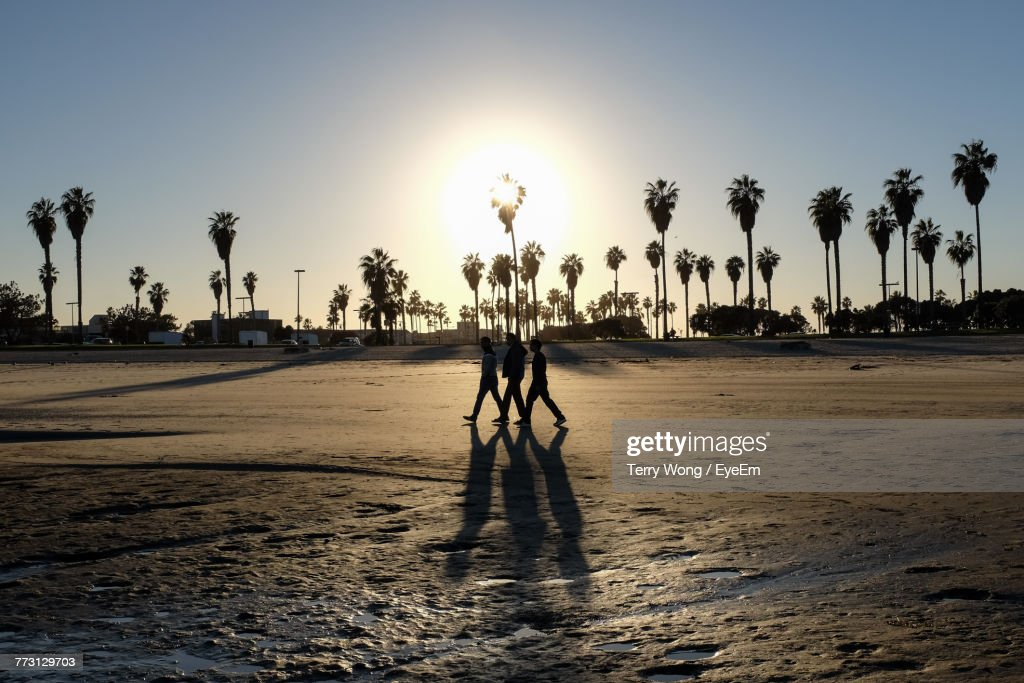 Friends Walking At Beach Against Sky During Sunset : Photo